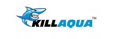 Killaqua